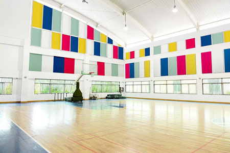 acoustic sports walling panels